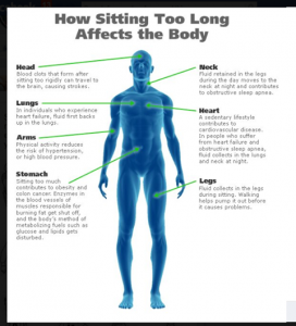 w--my_pictures-how_sitting_affects_body_pic